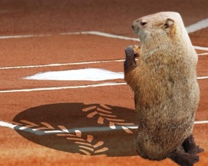 Groundhog Baseball